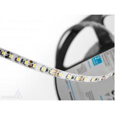 Светодиодная лента LP IP22 3528/120 LED (холодный белый, standart, 36)