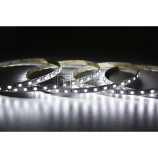 Открытая светодиодная лента SMD 5050 60LED/m IP33 12V White LUX GSlight